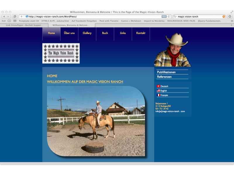 Magic Vision Ranch Anpassung WP-Theme, Screendesign, SEO, Mehrsprachikeit, Wordpress